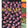 Corals, A Quick Reference Guide by Julian Sprung